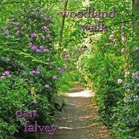 Dan Falvey - Woodland Walk